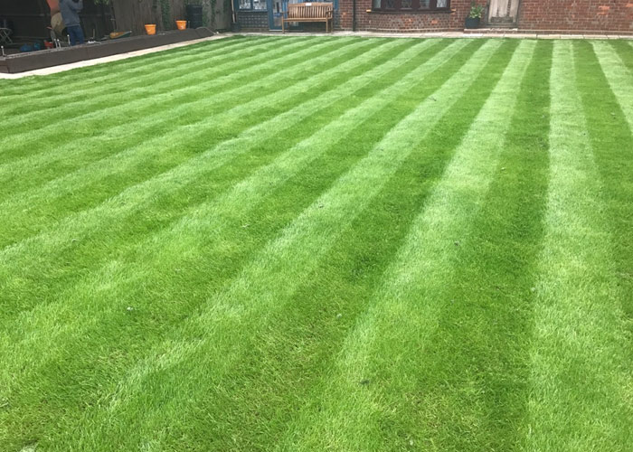 We also offer tailor-made maintenance 						programmes for all our soft landscaping projects