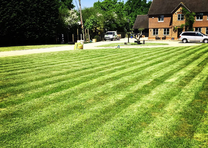 Turfing and lawn maintenance in Winkfield